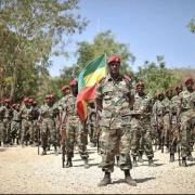 Government orders national defense force, federal police to enter into Ethio Somali region to restore order